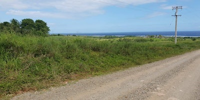 Freehold State Land For Sale