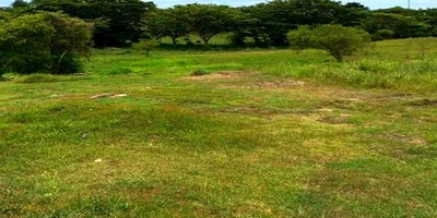 Residential vacant Land for sale