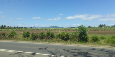 Nadi Commercial Property
