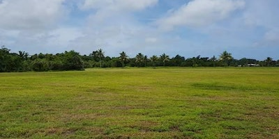 FREEHOLD WATERFRONT LOTS FOR SALE