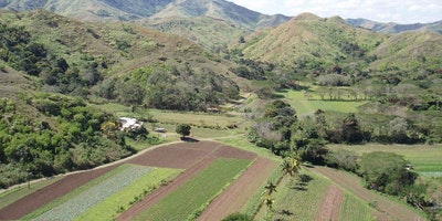 Sigatoka Freehold Land