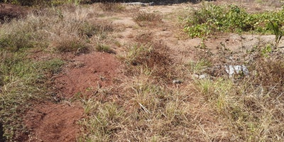 Quarter Acre Freehold Land