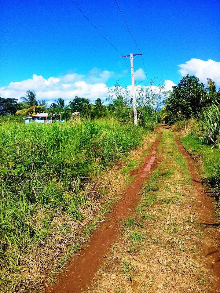 Six Vacant Lot for either Agriculture or residential use