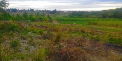 Vacant Nasoso Lot for Sale