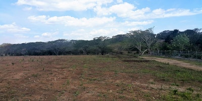 99 Yrs Native Lease Upon Purchase Farmland For Sale
