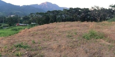 7604 sqm Native Land for Sale
