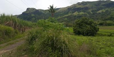 10.75 Acres Agricultural Land for Sale