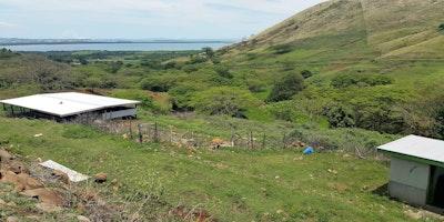 60 Acres Farmland Optional with Livestock for Sale