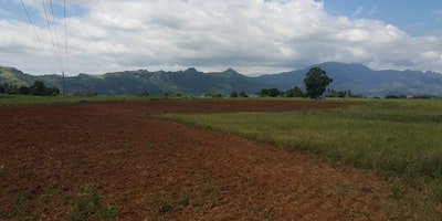 Rich and Fertile 10 Acres Land for Sale