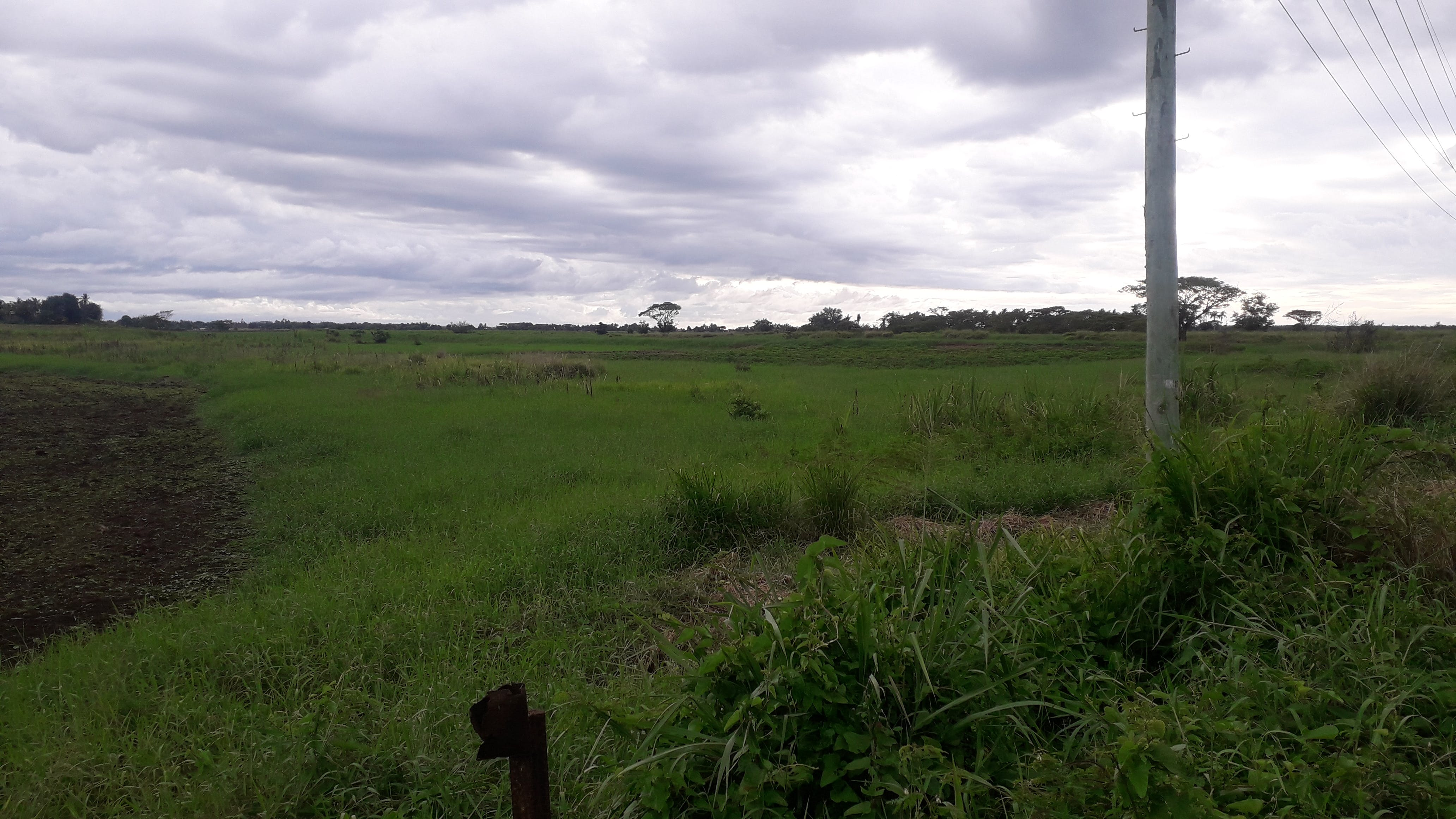 2 Acres Farm Land for Sale