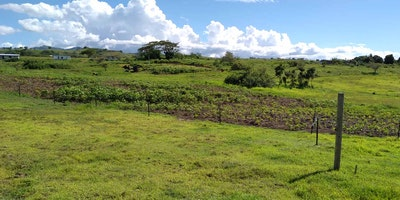 Native Residential Land For Sale