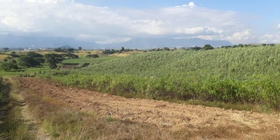 Freehold Farmland For Sale