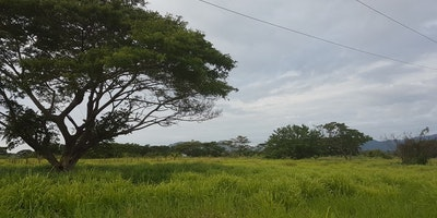 1476 square meters pleasant area for home or farming