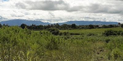 15 Acres Agricultural Land for Sale
